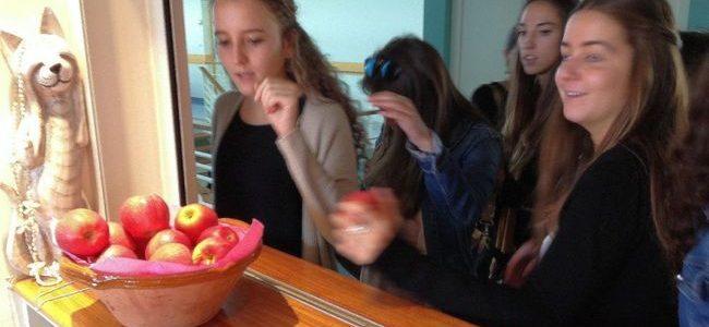 «Pause pommes» à l'IUT Gaco d'Agen